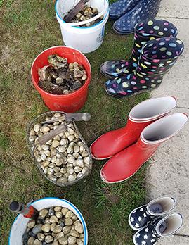 vos vacances au camping les brillas 3 233toiles dans le pays